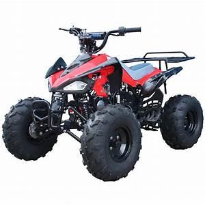 110cc ATVs, cheetah, taotao atv