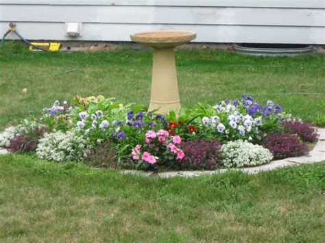 flowers growing around our septic tank cover the bird