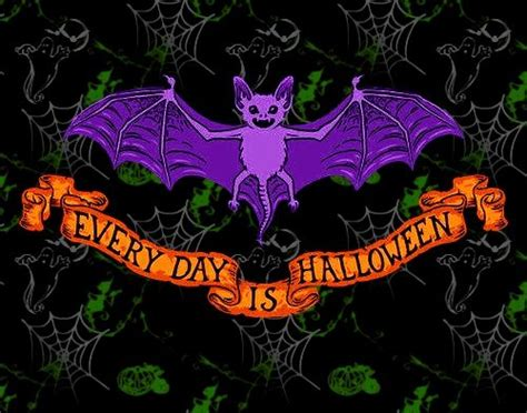 everyday  halloween pictures   images