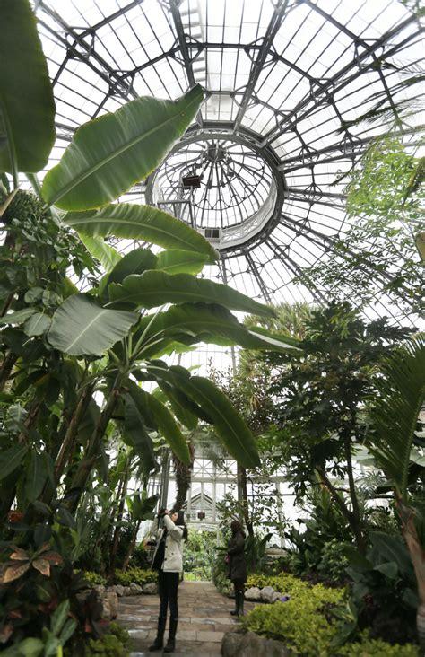 allan gardens  boost  bad winter  star