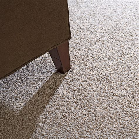 How To Remove Smell From Basement by Get Rid Of Carpet Smell Images Get Rid Of New Carpet