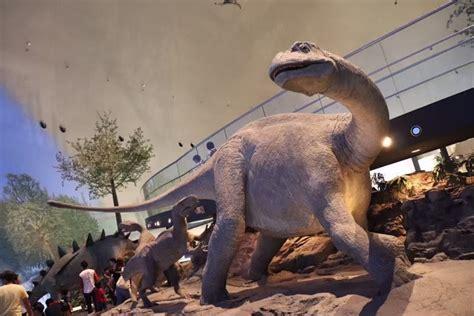 福井 恐竜 博物館 お 土産