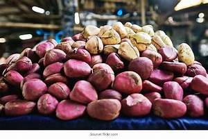 For Health Enthusiasts  Take A Look At Kola Nut Side Effect