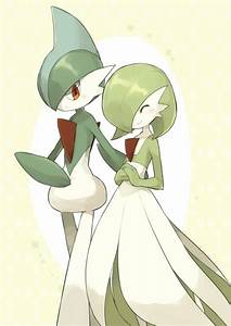Gallade & Gardevoir | Gardevoir | Know Your Meme