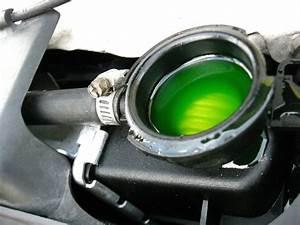 Engine Coolant   - Jaguar Forums