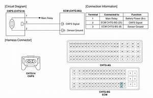 Kia Optima  Crankshaft Position Sensor  Ckps   Schematic