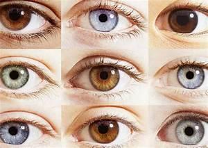 Sobre, Ojos, Claros, En, Busca, De, Un, Mismo, Ancestro