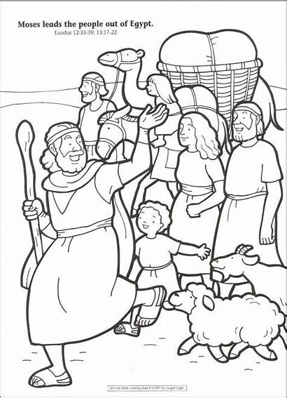 Coloring Beginners Pages God Bible Bookshelf Animals