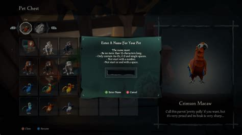 How To Change Your Name In Sea Of Thieves Pc