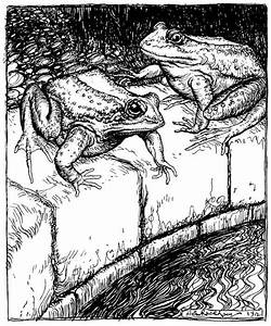 The Frogs And The Well