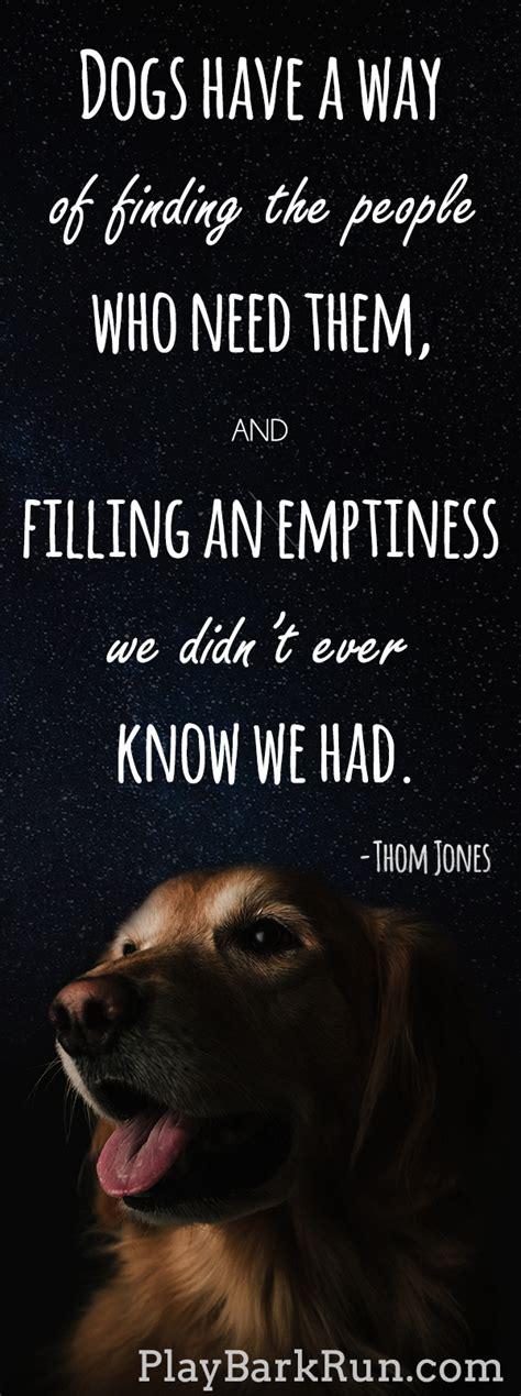 inspirational dog quotes  life  love dog