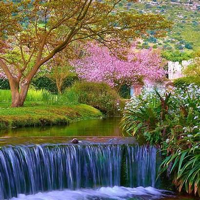 Spring Scenes Nature Scene Wallpapers Desktop Ipad