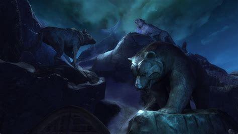 animal full hd wallpaper  background image
