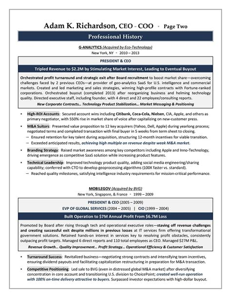 ceo  sample resume executive resume writer