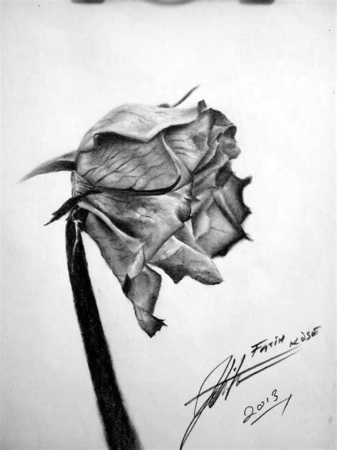 My Work .. ( Dead Rose.. ) by PlainWhite-92 on DeviantArt