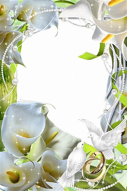 Transparent Frame Flowers Frames Yopriceville Borders Diy