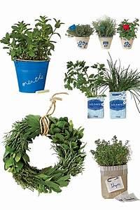 Herbes Aromatiques En Pot : des pots d herbes aromatiques customis s marie claire ~ Premium-room.com Idées de Décoration