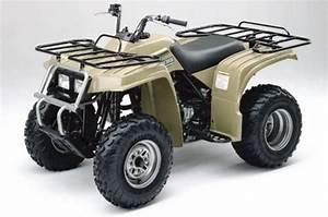 Yamaha Bear Tracker Service Manual 1999 2000 2001 2002