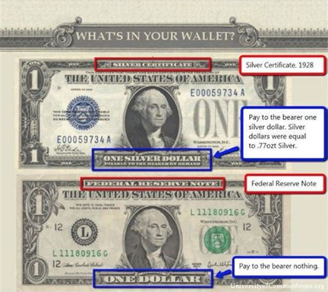 Fiat Currency by Lawful Money Or Credit Born In Equity