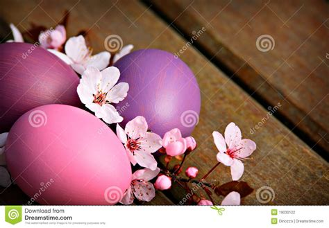 pink  purple easter eggs  flowers stock photo