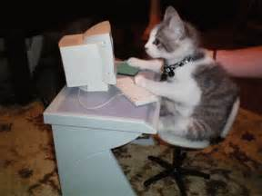 cat typing work cat gif work cat typing discover gifs