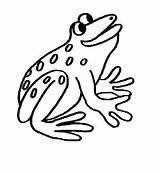 Colorat Grenouille Broasca Coloriage Broscute Disegni Imagini Anfibi Animale Cu Broscuta Broaste Plansa Planse Coloriages Desene Fisa Colorier Grenouilles Regarde sketch template