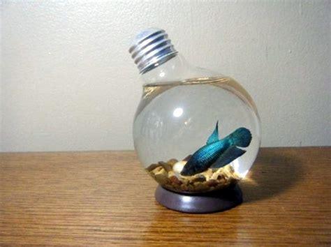 40 original light bulb aquarium decor ideas bored