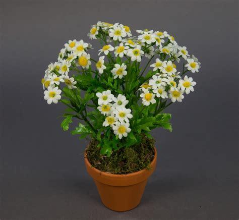 kunstblumen im topf kamillenbusch 25cm im topf cg kunstpflanzen kunstblumen k 252 nstliche pflanze kamille