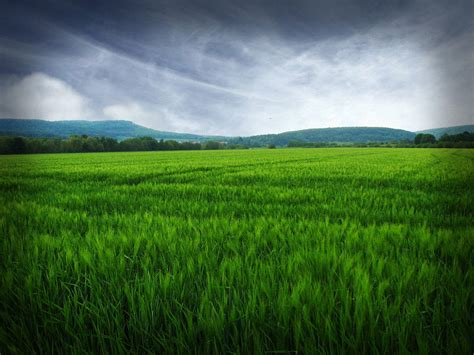 assessment  agricultural land factors affecting