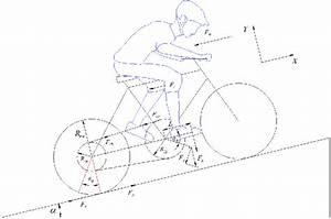 Free Body Diagram Of The Bicycle