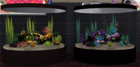 sims  blog fish tanks  sea urchins  theshed