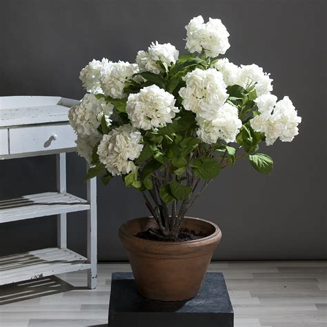 Im Topf by Hortensie Im Topf Kunstblume Kunstpflanze Topfpflanze 120