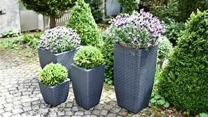 Blumenkübel Bepflanzen Sommer : terrasse bepflanzen tolle inspirationen bei westwing ~ Eleganceandgraceweddings.com Haus und Dekorationen