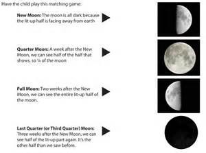Moon Phases Worksheet for Kids