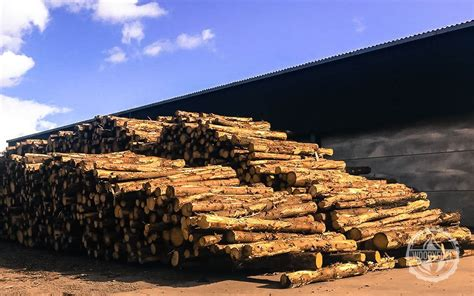 Green Energy Biomass & Wood Chip