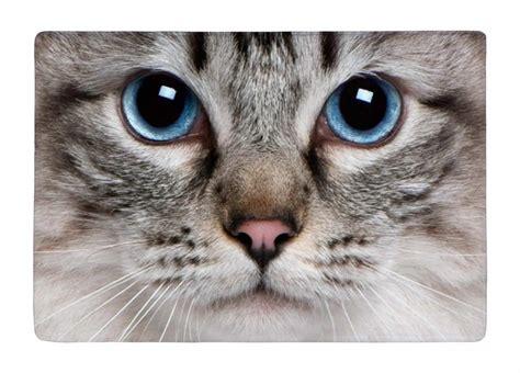 pipi de chat sur tapis pisse de chat sur tapis 28 images coussin chien et chat blanc large choix de produits 224 d