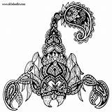 Scorpion Coloring Tattoo Doodles Scorpio Pages Adult Tattoos Welshpixie Mandala Scorpions Drawing Drawings Deviantart Little Traditional Doodle Deviant Abstract Don sketch template