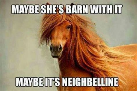 Sarah Jessica Parker Horse Meme - 47 best funny baby memes images on pinterest children crossfit humor and fitness humor