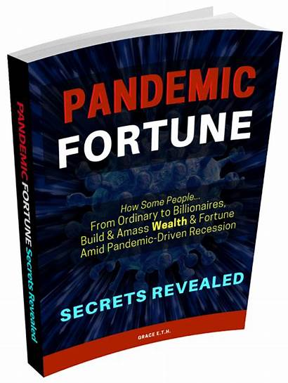 Fortune Pandemic Wealth Amass Revealed Secrets Amid