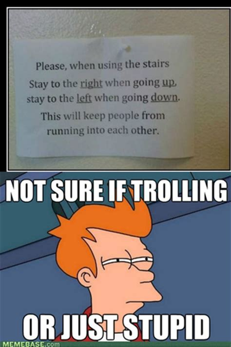 Memes images Trolling or just stupid? HD wallpaper and