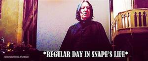 Just gifs - Severus Snape Fan Art (31619353) - Fanpop