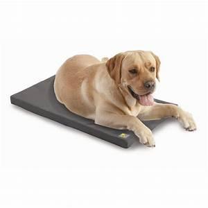 Fido Pet Shop : fido fletch large pet mat bunnings warehouse ~ Markanthonyermac.com Haus und Dekorationen