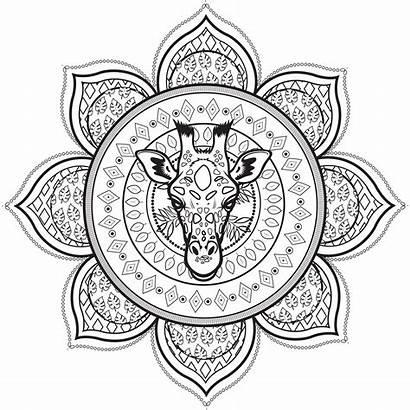Mandala Giraffe Coloring Mandalas Patterns Head Pages