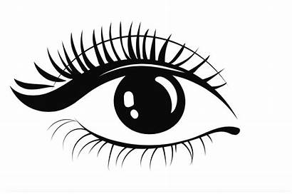 Eye Shape Lash Eyelashes Vector Shapes Styles