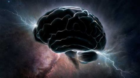 scientists pinpoint  consciousness switch responsible