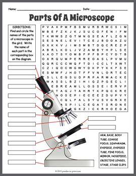 parts   microscope word search  puzzles  print tpt