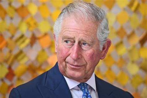 Prince Charles says he will keep views to himself when king