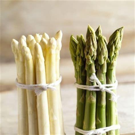 comment cuisiner les asperges blanches asperges comment les cuisiner toutpourlesfemmes