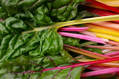 rainbow chard rainbow swiss chard recipe dishmaps