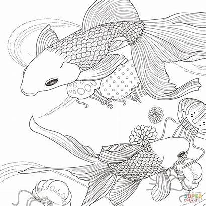 Fish Coloring Golden Pages Printable Sheets Fishes